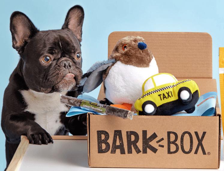 barkbox-compressor.png