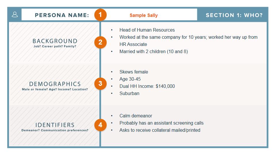 persona-template-demographics