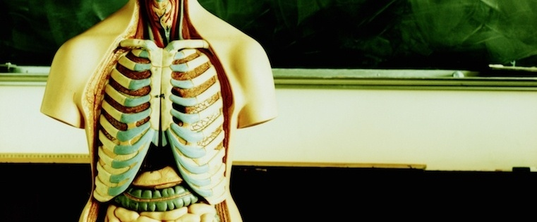 anatomy-modern-sales-team.jpg