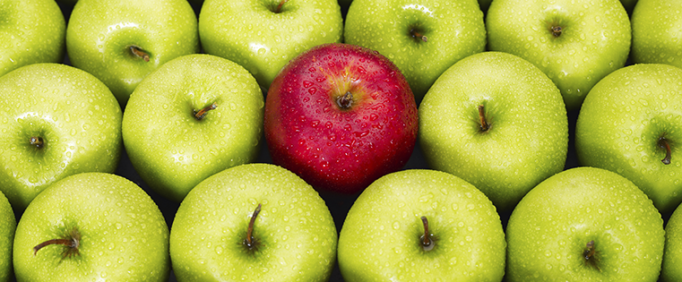 red-and-green-apples.png