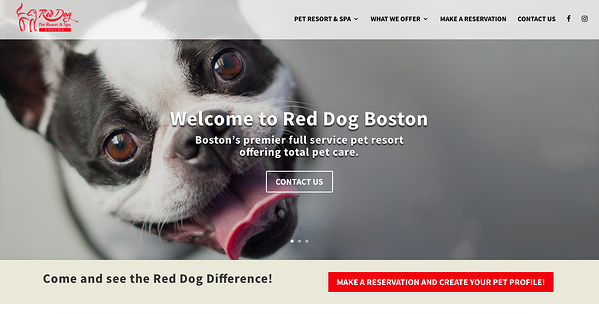 Red Dog's homepage uses the Avada theme.