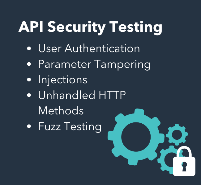 API security testing