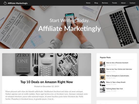 Affiliate Marketingly demo shows a blog post and sidebar display of popular posts with affiliate links