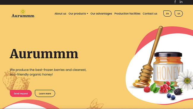 Aurummm website built with Weblium website builder