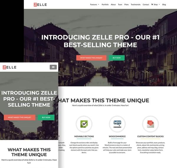 Best Parallax WordPress theme Zelle Pro demo