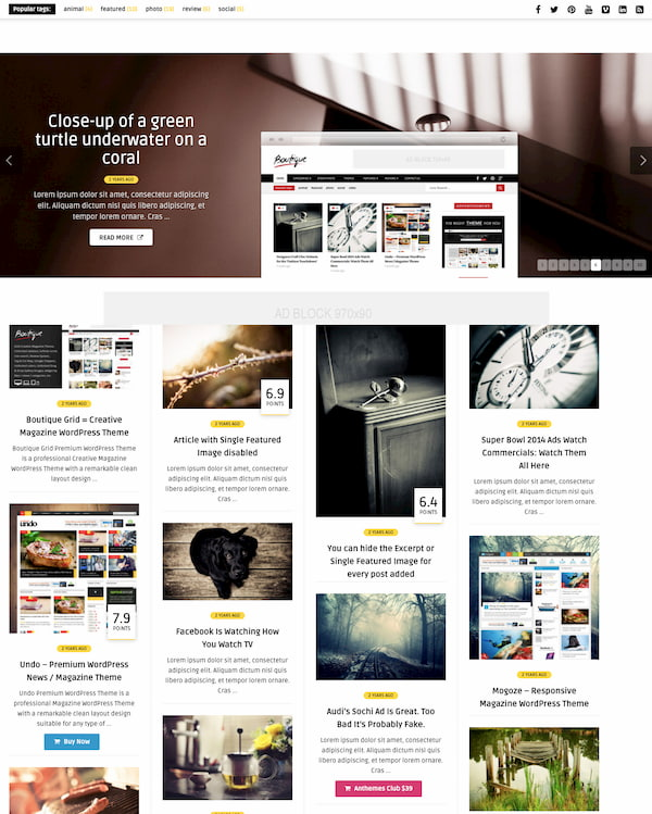 Bou theme demo features masonry grid of blog posts-1