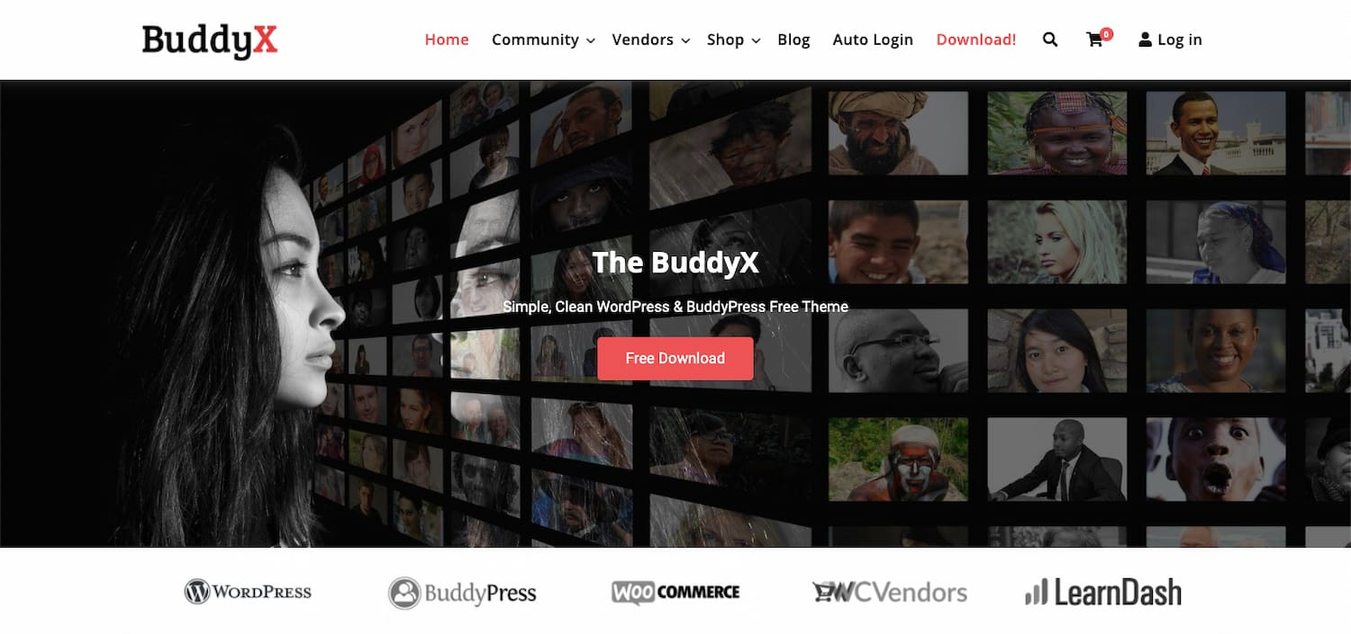 Buddyx demo shows a simple and clean BuddyPress theme for WordPress