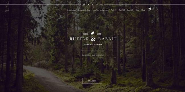 Coming soon demo of Rabbit WordPress theme