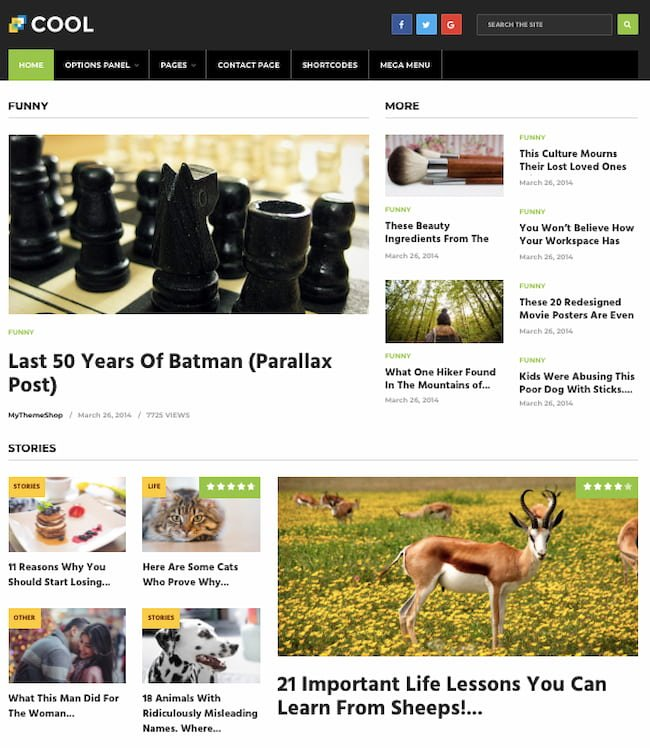 Cool theme demo shows WordPress site with blog posts and product reviews