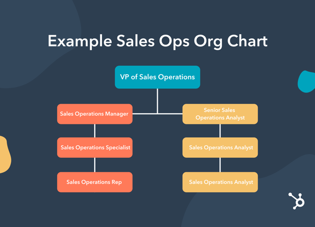 Example sales operations organization chart