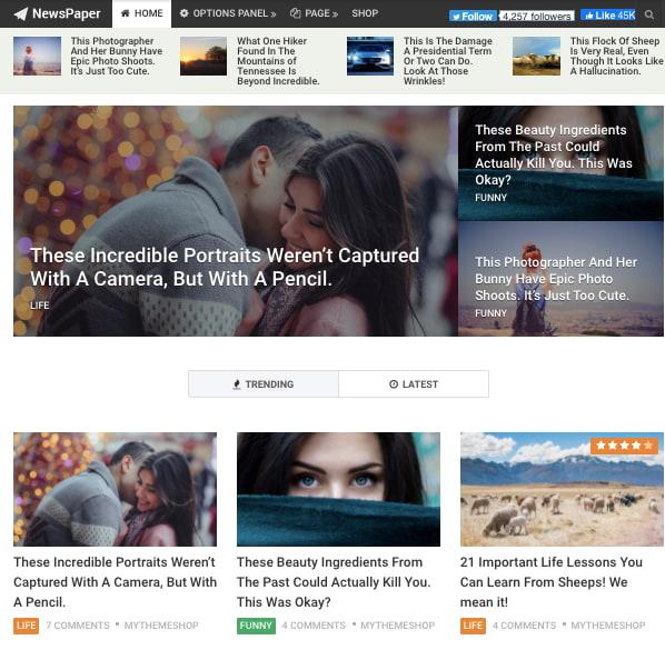 Default demo of fast WordPress themeNewsPaper