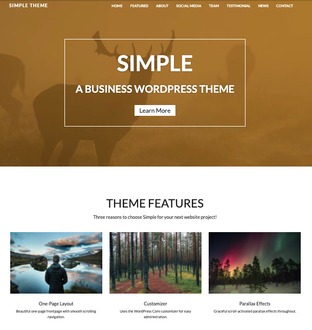 Demo of Simple, one of the fastest WordPress themes
