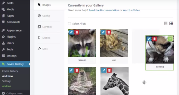 A user drags and drops a picture of a bull dog into the photo gallery built with the Envira Gallery plugin