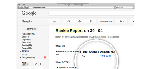 "An opened email from Rankie reporting a change in the ranking position of ""seo"""