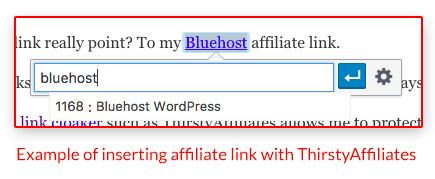 Insert an affiliate link by typing in a keyword with ThirstyAffiliates plugin