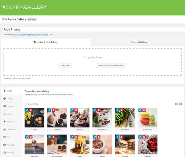 Envira Gallery best WordPress plugin