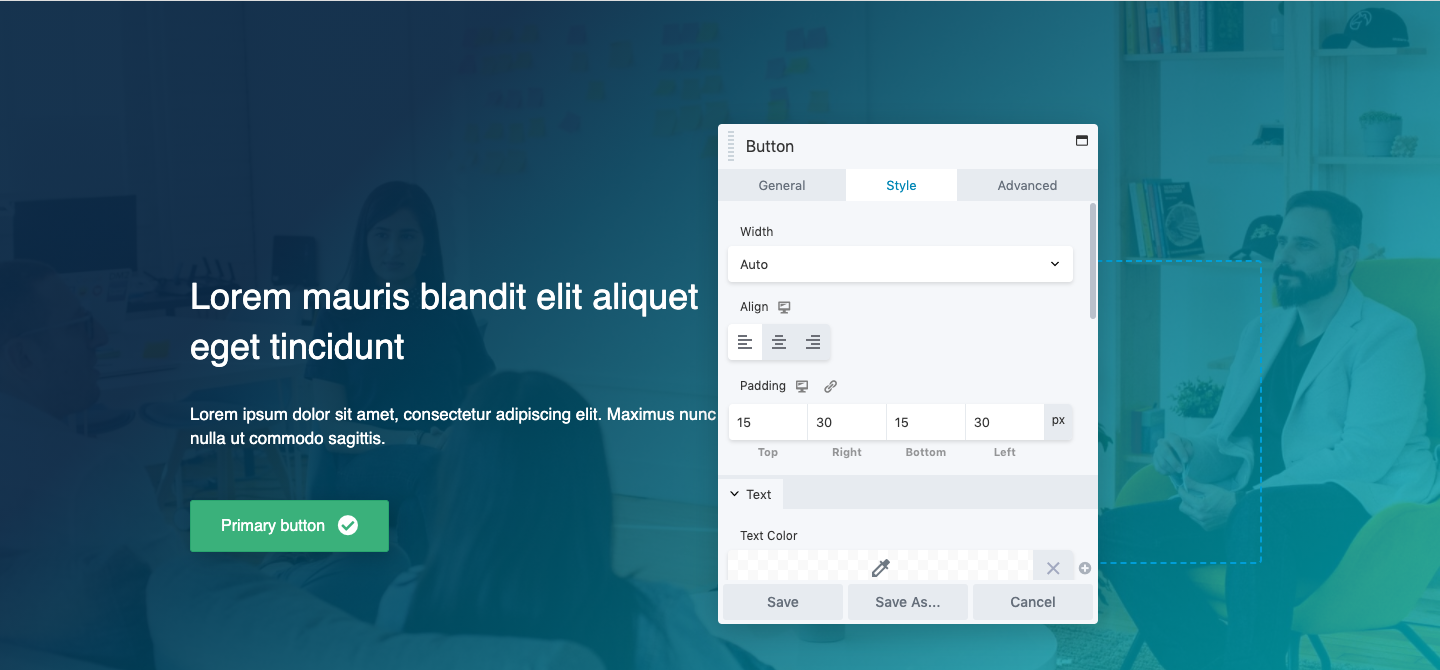 Editing button in Beaver Builder live demo