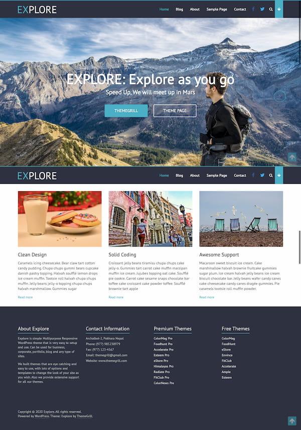 Explore free minimalistic WordPress theme demo