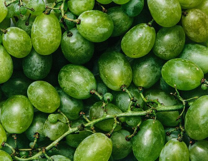 Fancy Crave stock image of green grapes