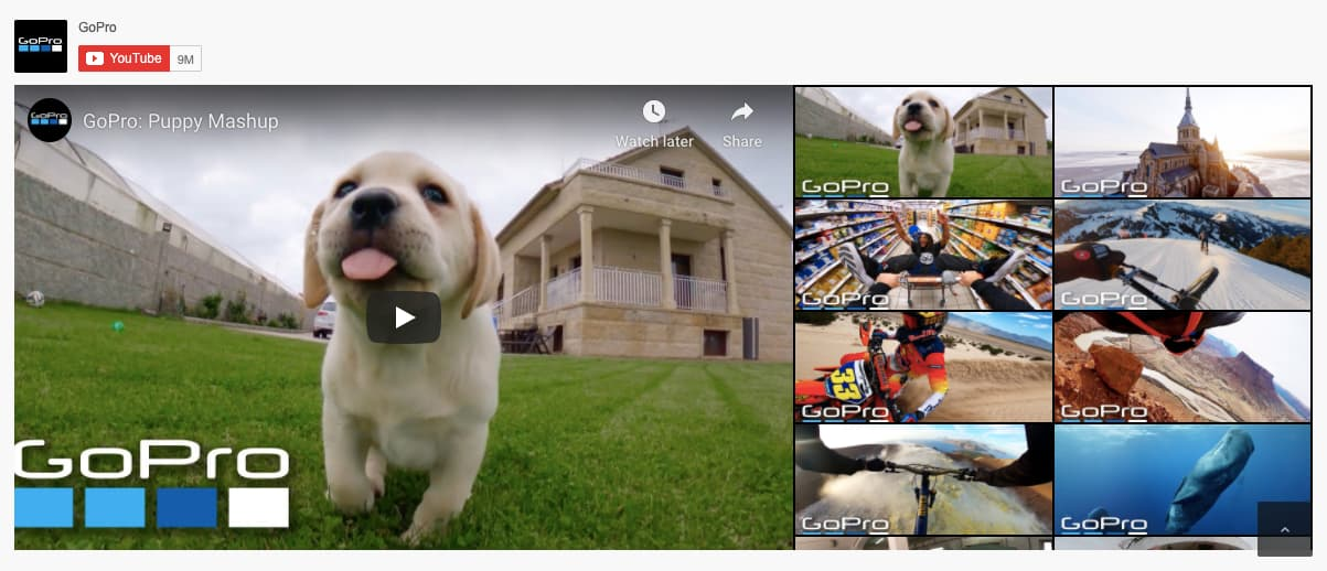 Feed Them Social Premium YouTube grid demo