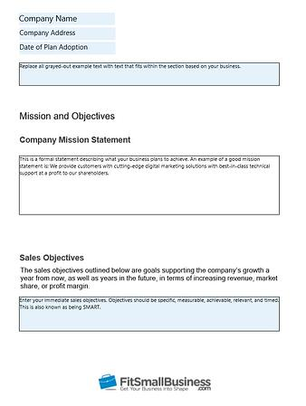 Small Business Sales Plan in Microsoft Word With Fillable Section Boxes