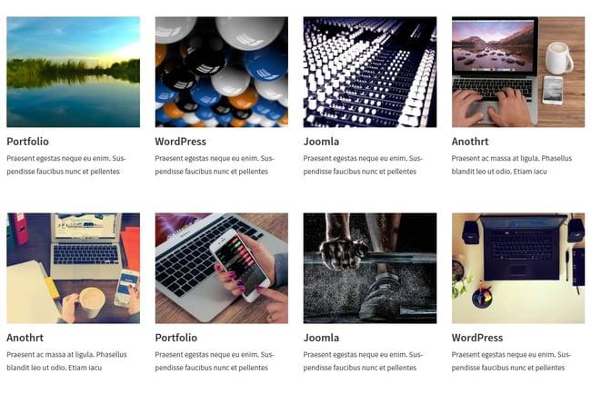 Four column image porfolio created with RadiusThemes Portfolio plugin for WordPress