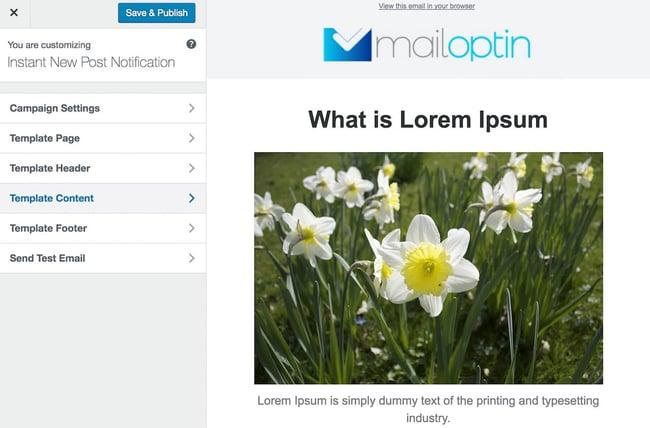 WordPress newsletter plugin: Mail Optin