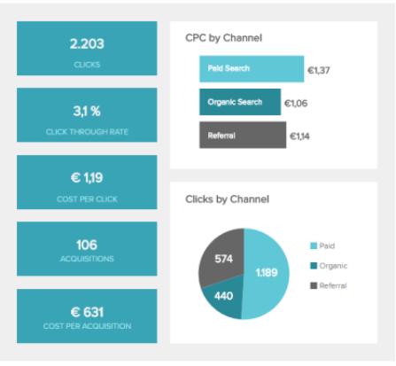 Datapine's organized Analytics dashboard.
