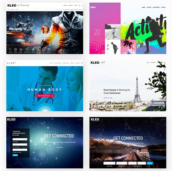 best material design wordpress theme: KLEO