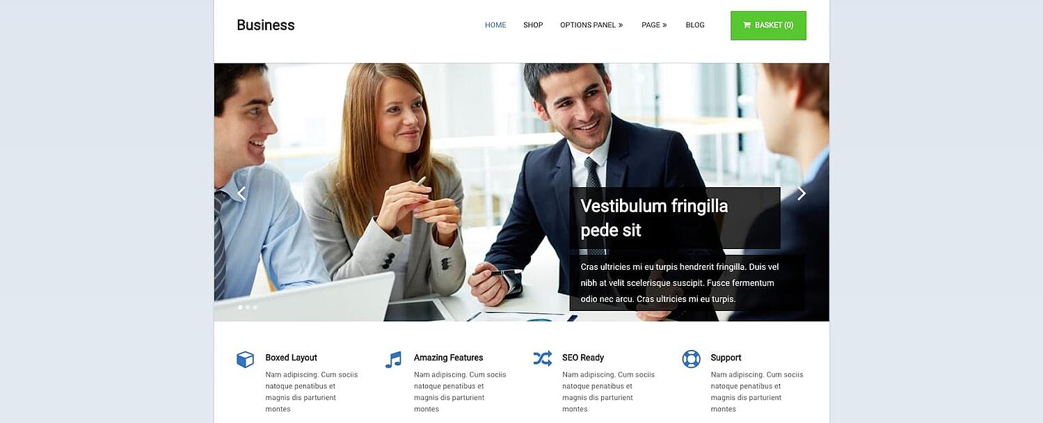 product page for the corporate WordPress theme Business