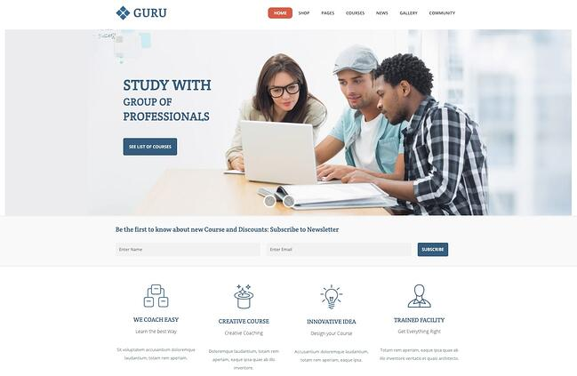 demo page for the wordpress theme for online courses guru