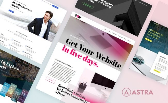 Astra Business Consulting WordPress Theme