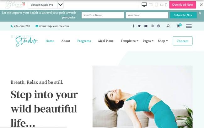 Consulting WordPress Theme Blossom Studio Pro