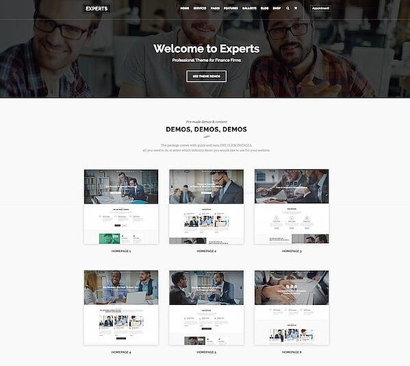 Experts is one of the best consulting WordPress themes