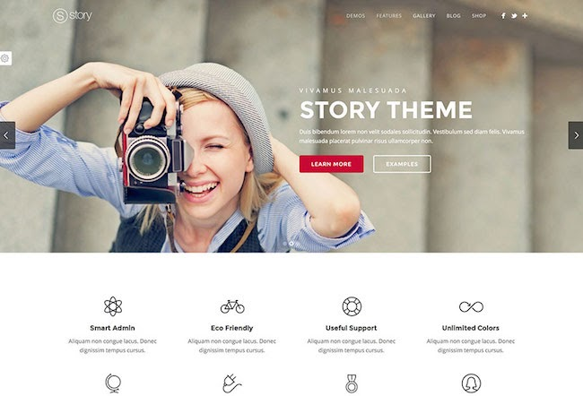 Story WordPress theme with a photographer on the front page