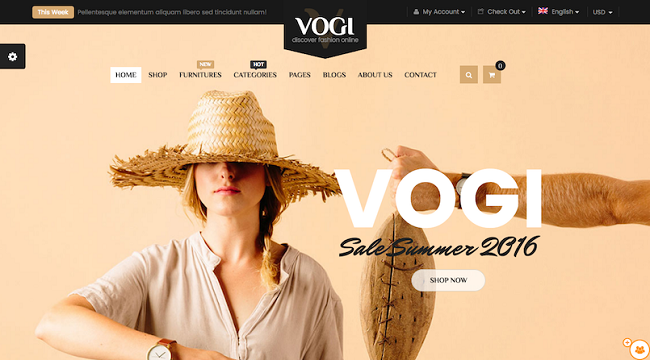 vogi wordpress theme with a woman in a hat in front of a nude colored background