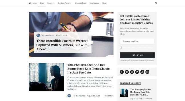 demo page for the best wordpress theme for seo writer