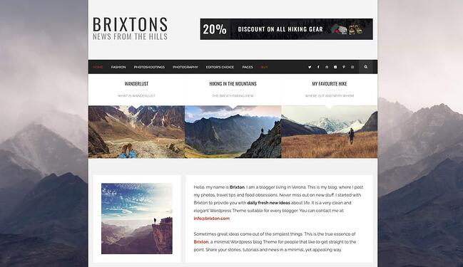 demo page for the best wordpress theme for seo brixton