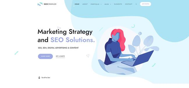 demo page for the best wordpress theme for seo seo crawler