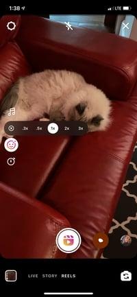 playback speed tool in Instagram Reels