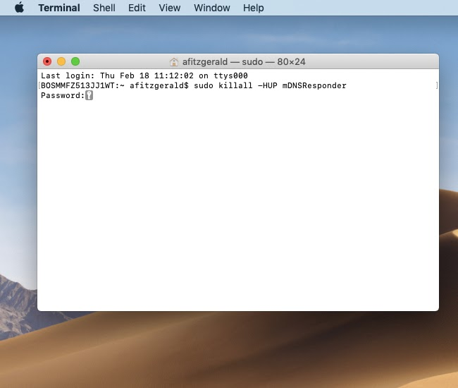 Type in command in Terminal to flush DNS in Mac OS X 10.11-10.15