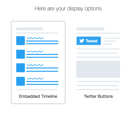 display options for twitter publish