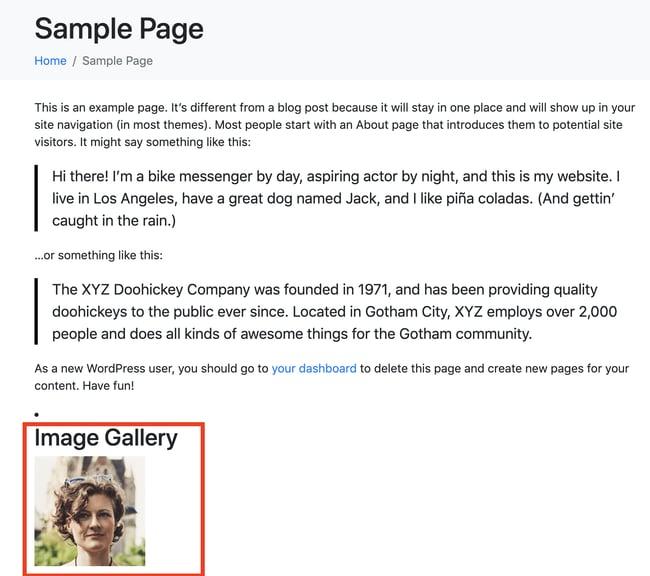 example of adding widget to WordPress page