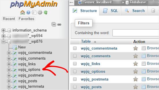 phpMyAdmin theme change wordpress