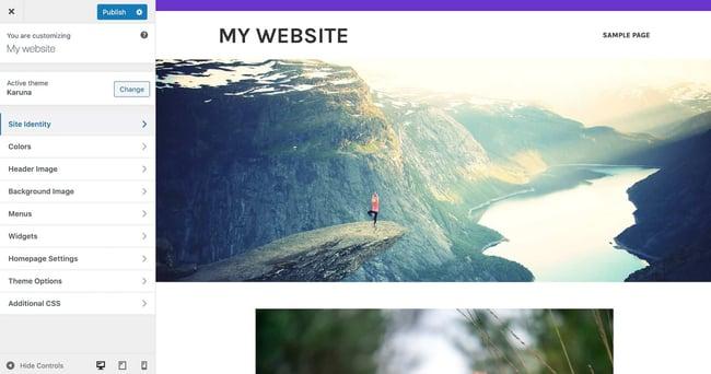 the wordpress customizer for customizing a wordpress theme