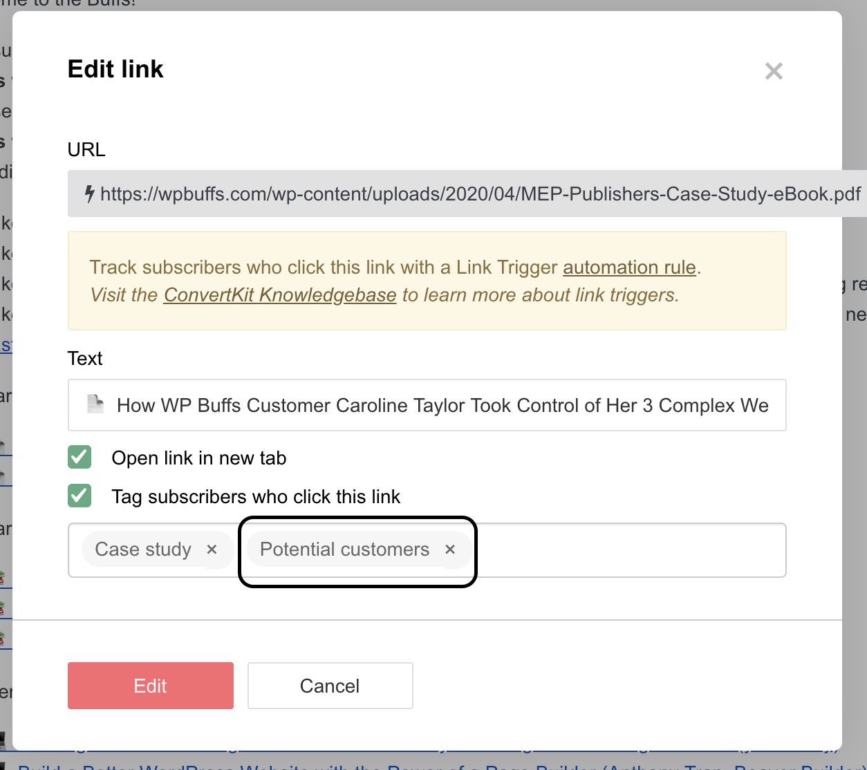 Back end of a link showing clicking that link will tag you as a potential customer