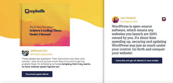 WP Buffs' eBook and case study offers in exchange for subscribing