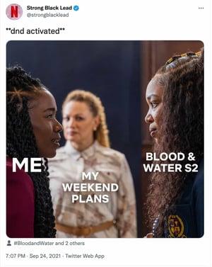 meme marketing example by Netflix