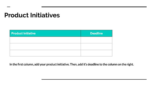 Product Initiatives table