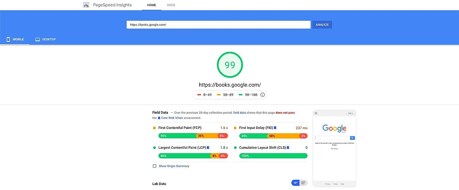 screenshot of the website performance assessment Google PageSpeed Insights